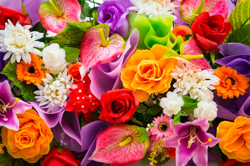 Nomes de flores de A a Z